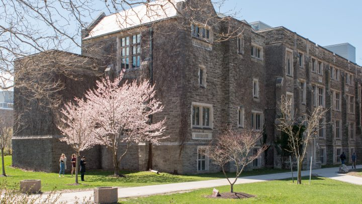 macmaster in the spring